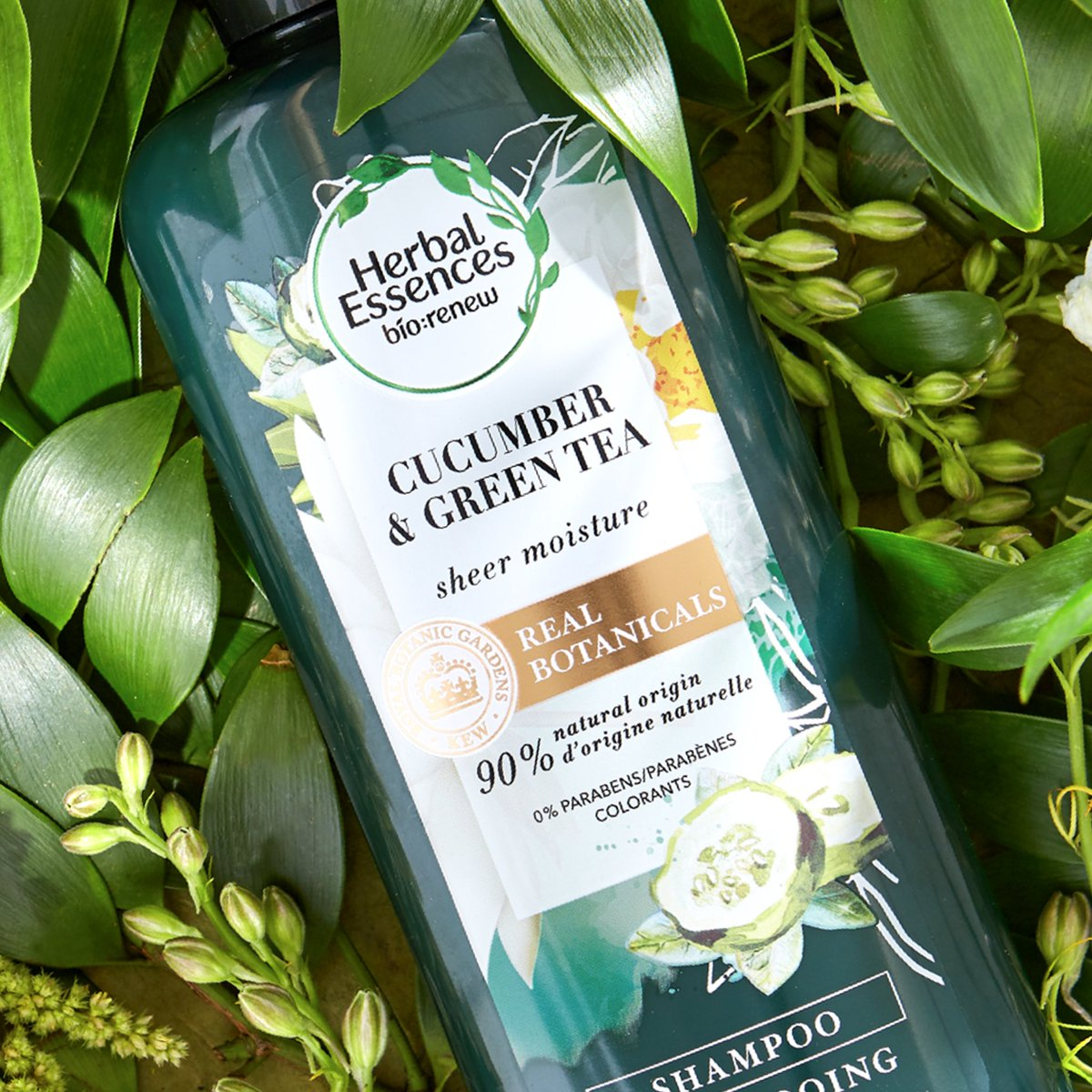 Easing your hair woes from root to tip with our Cucumber and Green Tea Collection 🥒 Its sheer moisture is great for treating dry, oily or combination hair, not to mention it has real botanicals endorsed by the Royal Botanic Gardens, Kew @KewGardens. How's your hair doing today? https://t.co/a0RsetRYFi