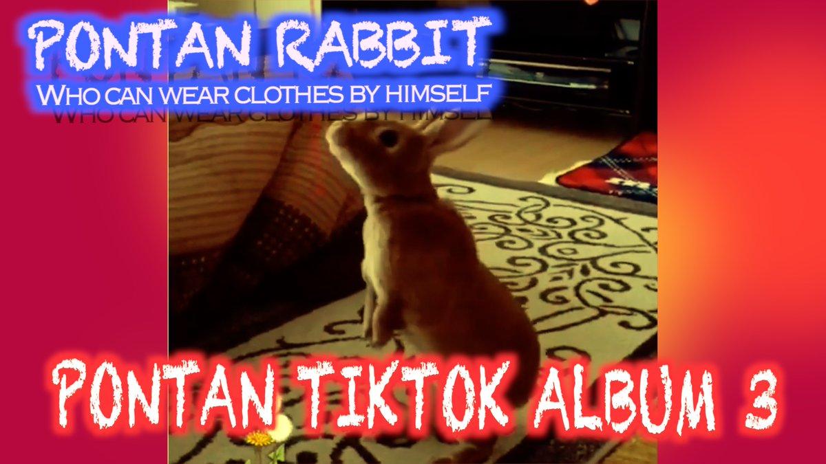 今日の動画ですTikToK Movies Album 3 TikTokアルバム3