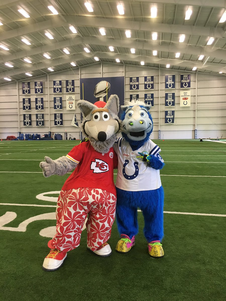 Kc Wolf On Twitter Congratulations To My Furternity Brother Blue For Being Inducted Into The Mascot Hall Of Fame Well Deserved Chiefskingdom Mhof Colts Https T Co F1fezwf42r