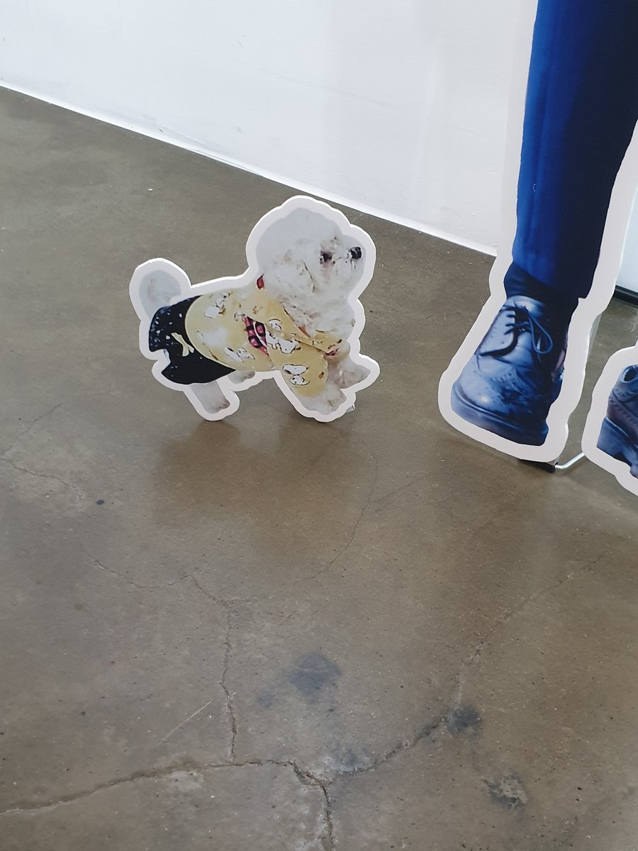 Jinhyuk's dog 아롱이 at square exhibition <br>http://pic.twitter.com/liHuwD6aKY