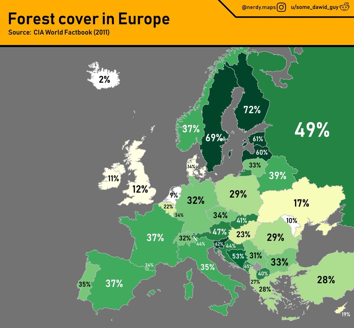 процент территории занятой лесами