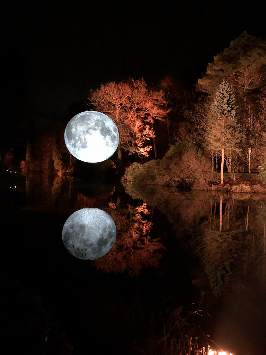 """The moon came down to say """"Hello"""" and the animals came out to greet it. . . #LeonardsleeIlluminated #lights #moon #fox #dormouse #reflection #garden"""