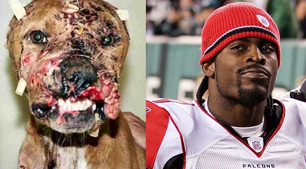 Michael Vick awarded Sportsman of the Year by Subway, BET - Dogtime http://po.st/hzi7zq via @po_st  Convicted felon, dog fighter, dog abuser.  It's like nothing happened, he didn't do this or worse.  Stop rewarding the bad guyspic.twitter.com/R8HqUEetaS