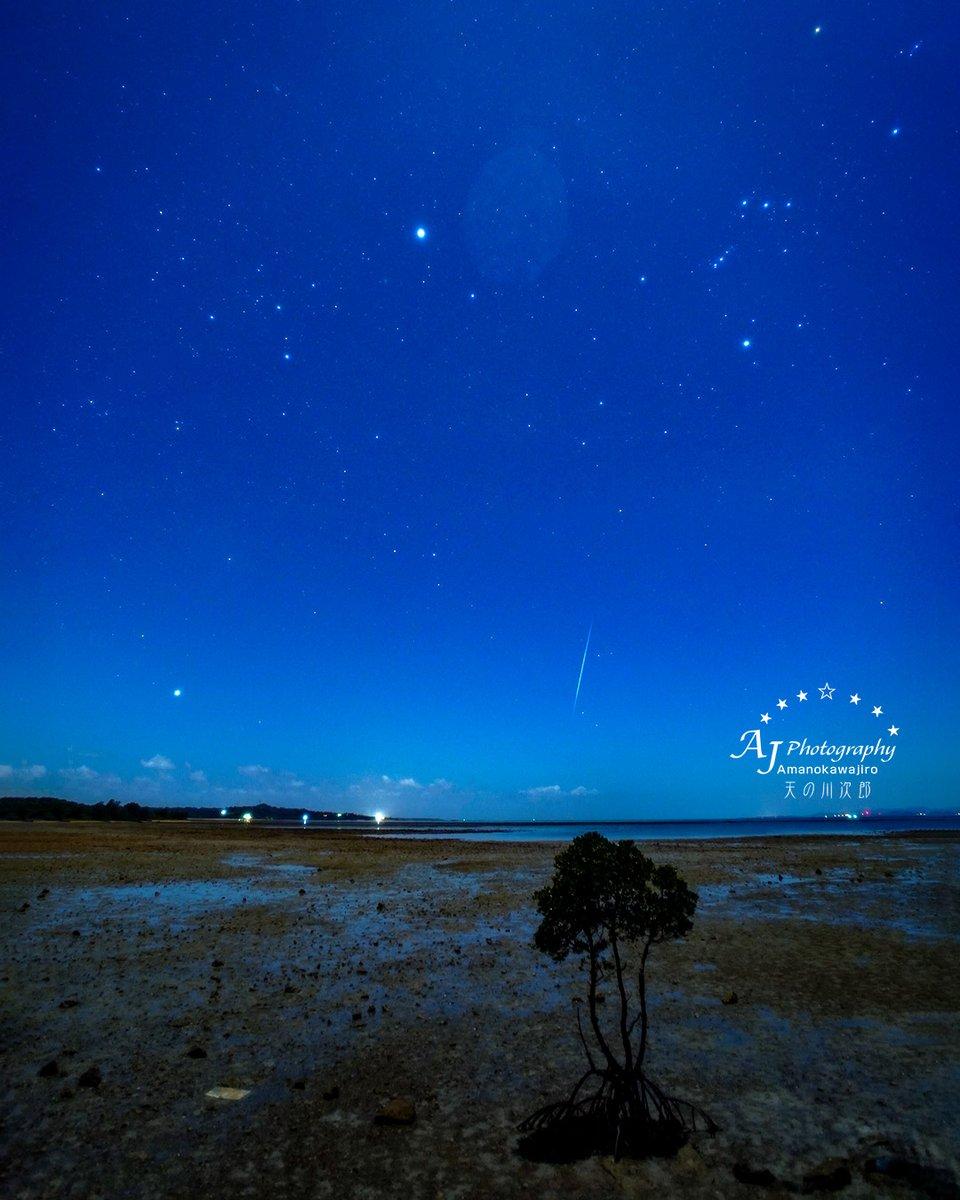 💫ふたご座流星群2019💫 縦構図  今朝3:44に撮影してきたよ ^ ^ 。  カメラをセッティング中に画角に入るように流れ星が出るのはなぜ?  SONY α7 III  #石垣島 #天の川次郎 #ふたご座流星群 #流れ星 #カノープス #シリウス #オリオン座 #マングローブ #ishigaki #sony #a7iii #SonyImages #leofoto