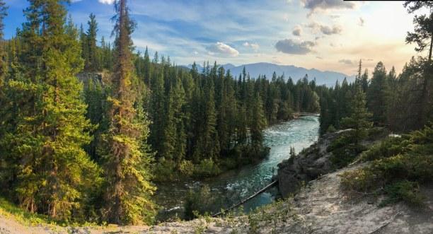 Mache es wie Viktoria und gehe auf Bärensuche im Jasper Nationalpark in Kanada 🐻🌲 . . #trasty #travelstory #jaspernationalpark #nationalpark #kanada #reisen #reiselust #reisefieber #weltenbummler #reisenmachtglücklich https://t.co/vmQWj6TVow