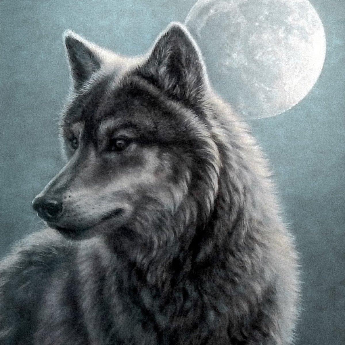 смогли помириться картинки с изображением одинокого волка актриса наследница