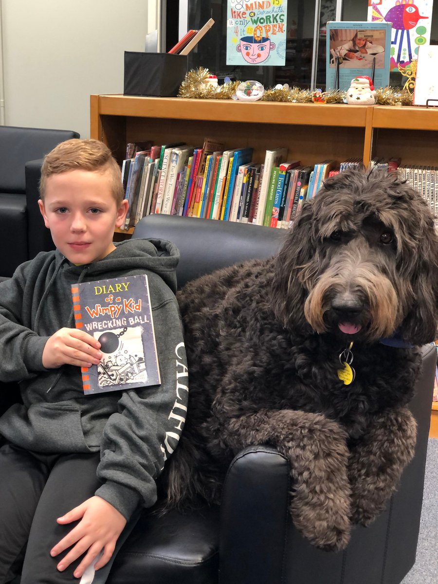 Sir Bear The Goldendoodle On Twitter The Book Fair Has Ended But These Kids Found Some Great Reads Diary Of A Wimpy Kid Dog Man Dork Diaries Will Always Be Favorites