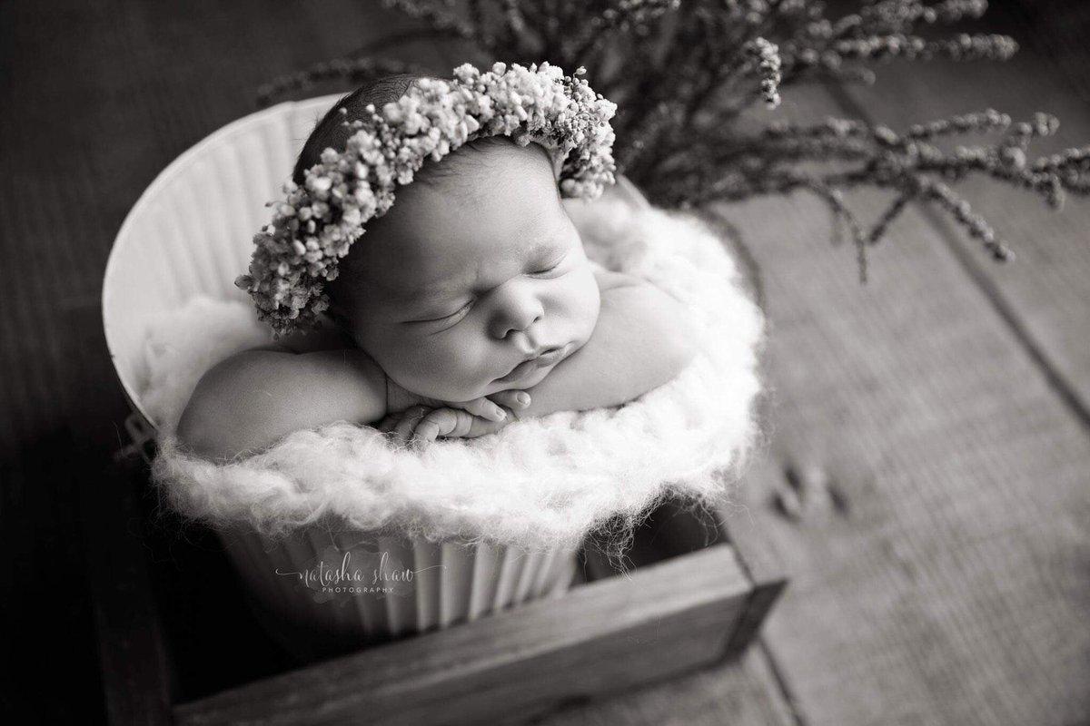 Stunning Willow in black & white http://www.natashashawphotography.com #natashashawphotography #yanchepphotographer #yanchep #yanchepperth #perth #newborn #newbornphotography #newborns #mumsofperth #newbornphotographer #maternityphotographypic.twitter.com/7flNt2Hxos