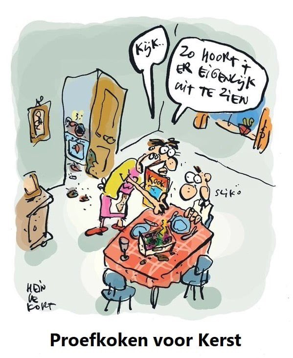 """Hein on Twitter: """"#heindekort #kortoons #humor #kerst #kerstdiner  #proefkoken… """""""