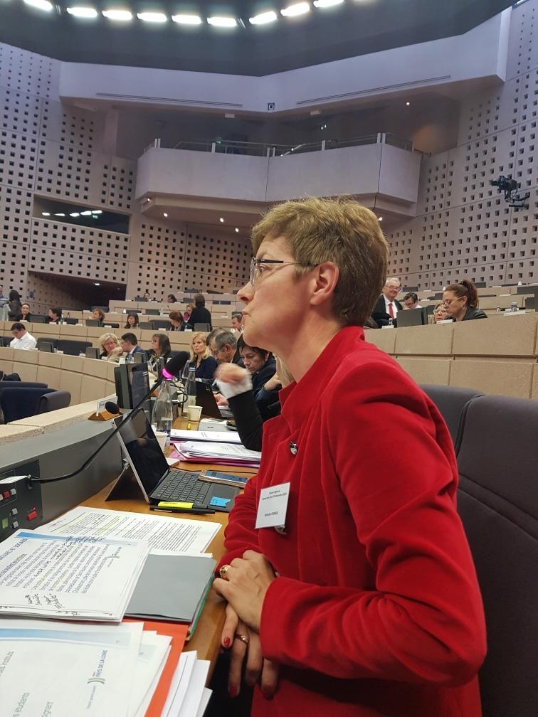 #formation #santé #social  #budget2020 : la #RégionPaysdelaLoire volontariste