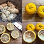 冬至(明日22日 日曜日)にいかが?牡蠣の柚子釜蒸し。とんでもなく美味しいですよ。