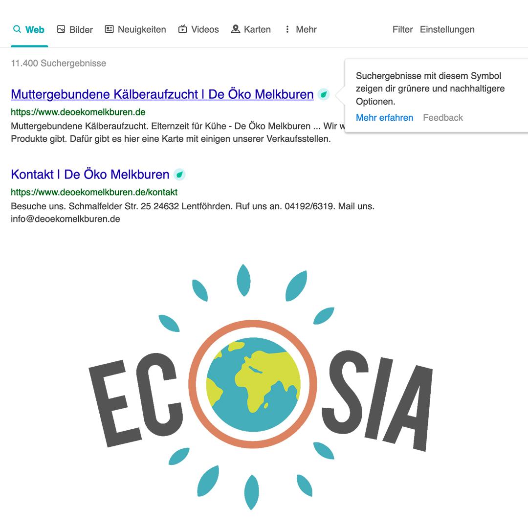 www.ecosia suchmaschine