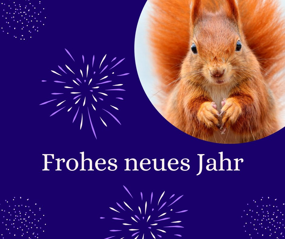 Frohes Neues