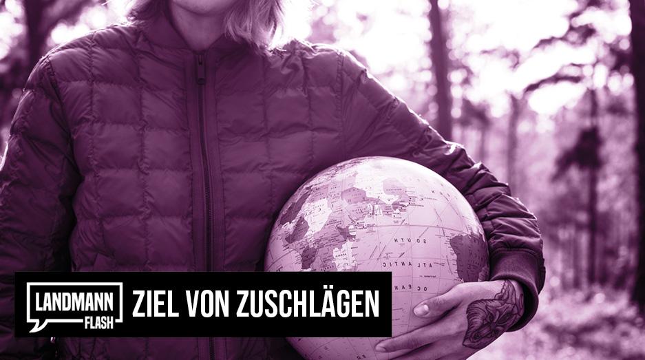 Valentin Landmann über das Ziel von Zuschlägen   @V_Landmann  https://t.co/zqLENcZI6r     #LandmannFlash #ValentinLandmann #Politik #Schweiz https://t.co/4c6Tmy2fL6
