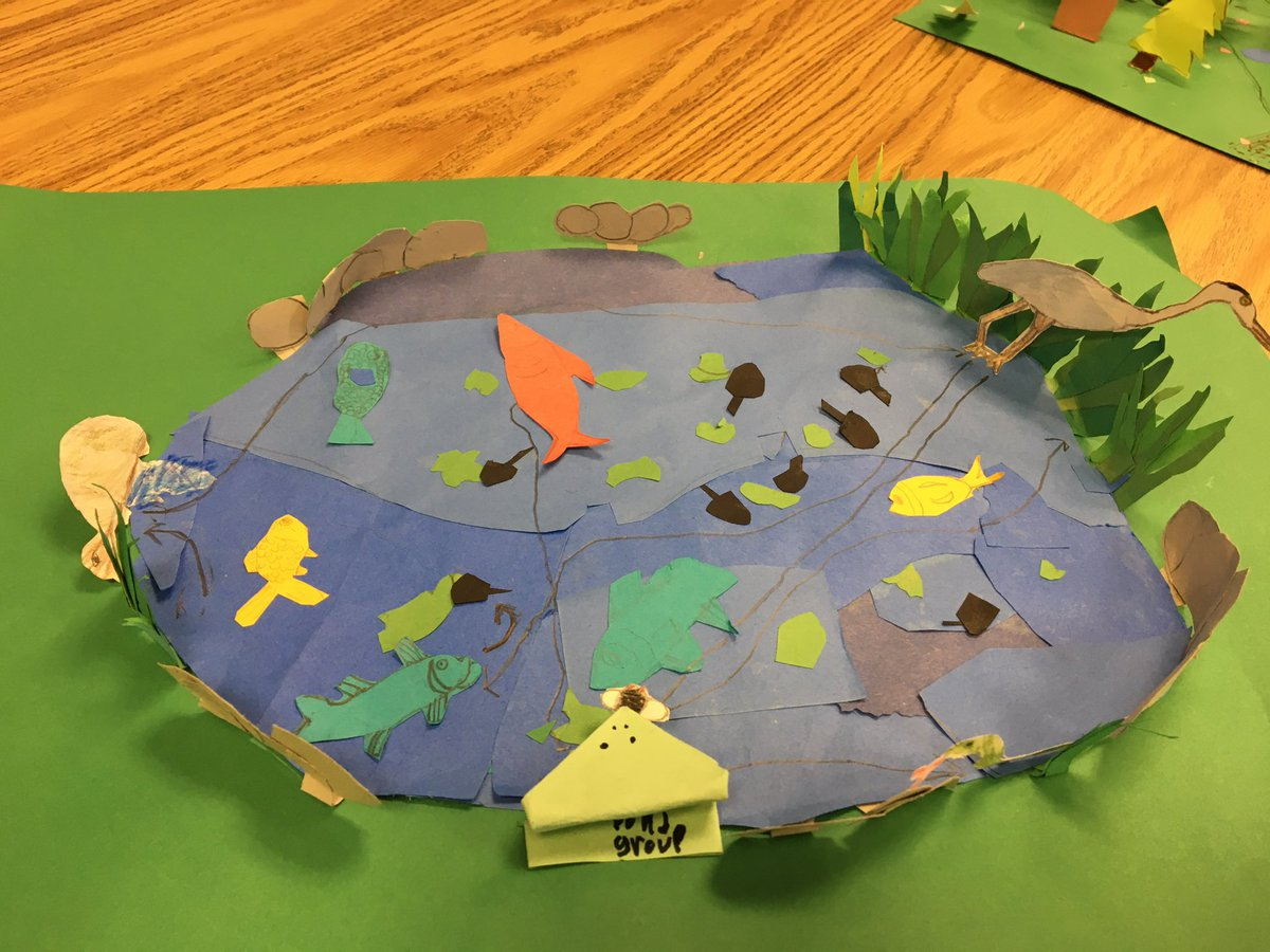 Students presented their ecosystem  to their peers showing their understanding of food chains and populations within an ecosystem  <a target='_blank' href='http://twitter.com/CampbellAPS'>@CampbellAPS</a> <a target='_blank' href='https://t.co/vbQMWefGBP'>https://t.co/vbQMWefGBP</a>