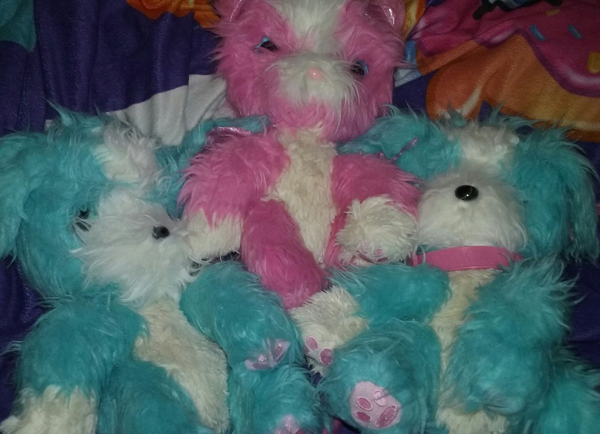 I tried to get a teal cat. Not so lucky but my pink exclusive from target... was a cat! Scruffaluv reals are just as cute as the originals. Washable, make sounds and brush much easier. #scruffaluvs #moose #robopet
