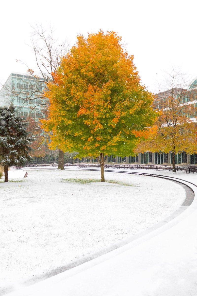 It's *snow secret* that we love winter. #FirstDayOfWinter