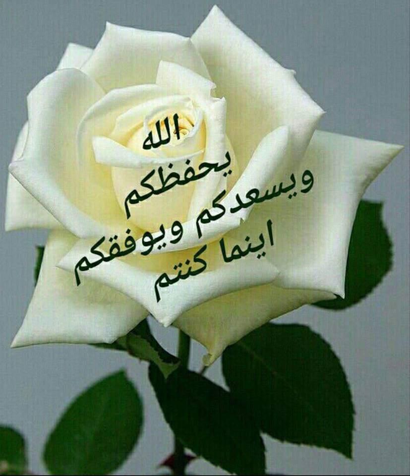 الرد على احسنت بارك الله فيك