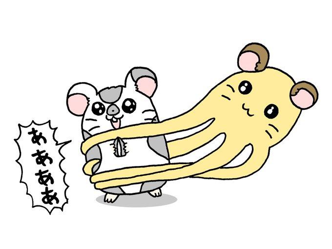 まるちゃん ハム 太郎 ちび
