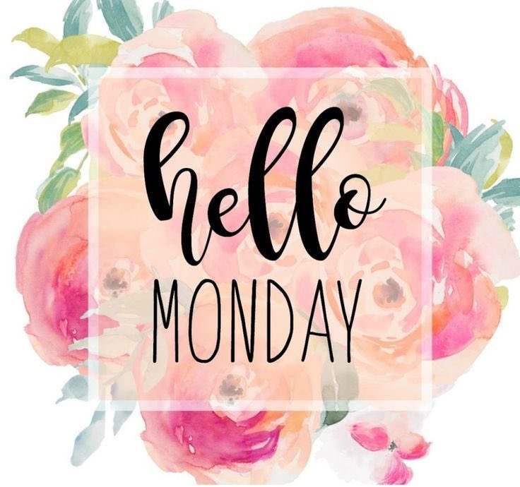 Happy Monday everyone! Book Online with us NOW, we're here for all your dental wants and needs! : Pinterest.  #sandgate #sandgatebaysidedental #robertduhigdentist #dentist #dentalassistant #northbrisbanedentist #dentistry #brisbane #brisbanedentist #dentallife #happypic.twitter.com/JNjXJVVGaJ
