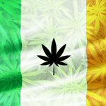 Image for the Tweet beginning: Within Ireland, #cannabis consumption has
