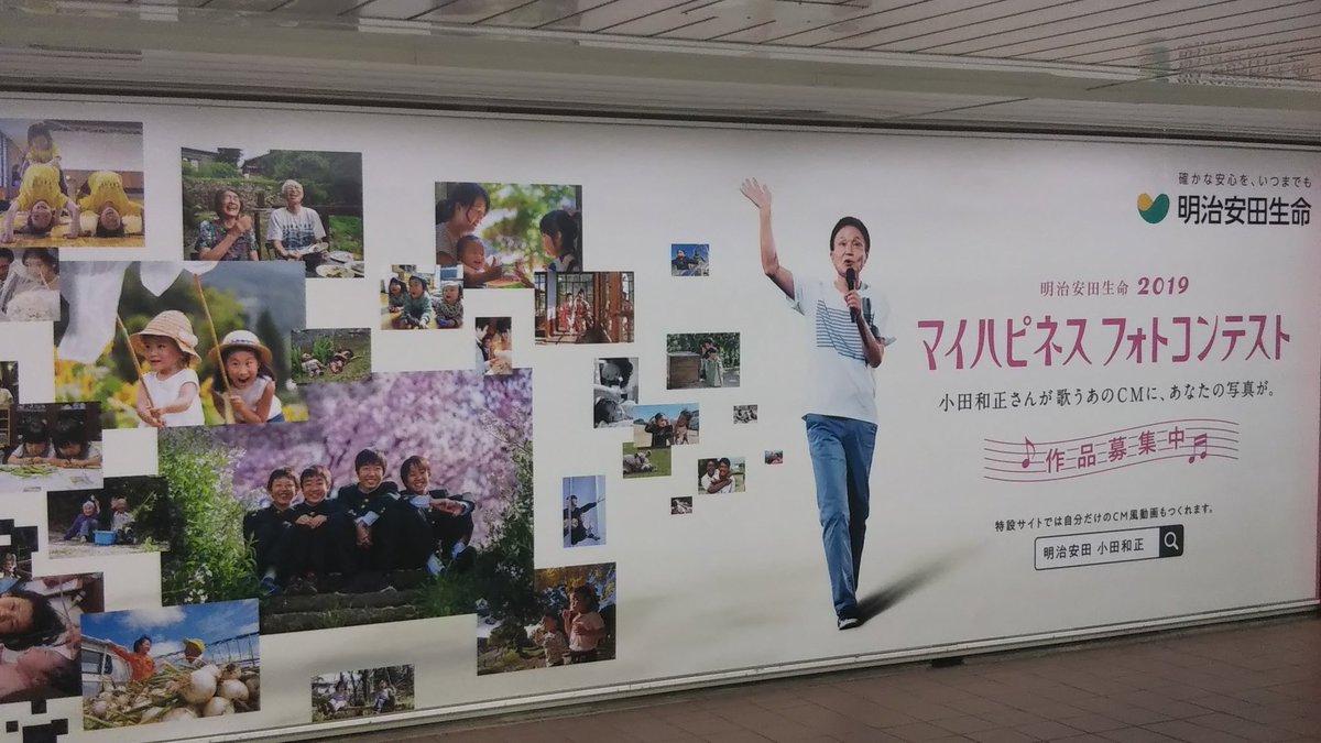 2020 フォト コンテスト 生命 明治 安田