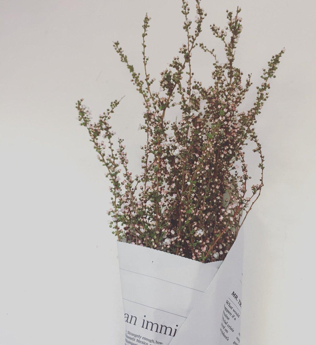 +お知らせ+ 新年をお祝いするお花、お飾りは12/27(金)の午後から店頭に並びます。年内の営業は12/30(月)迄となります。12/31〜1/9は冬休みをいただきます。*なお、ギフトの配送は1/1お届け分まで承ります。新年は1/11お届け分からお受けいたします。* どうぞよろしくお願いいたします。