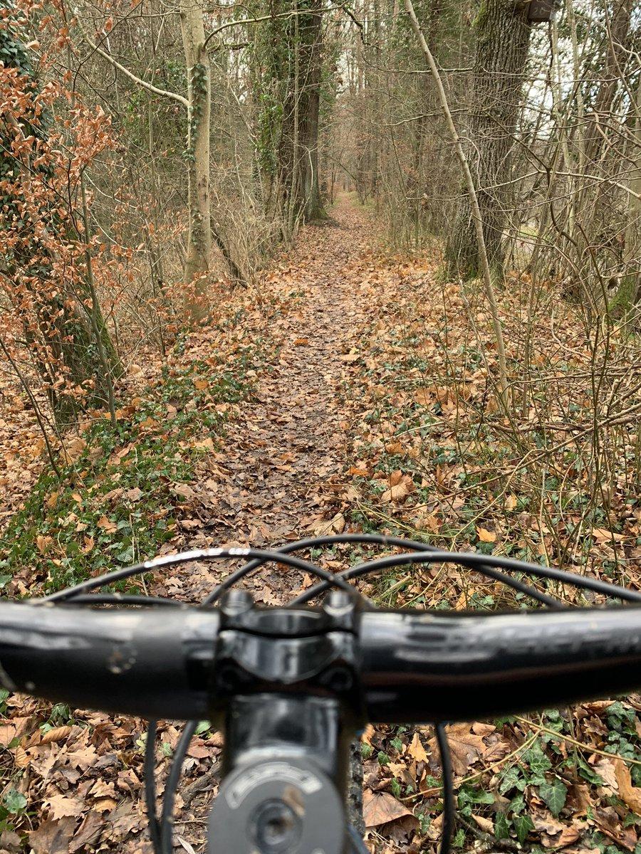 ▷ Mountainbike Singletrails Bodensee | ibt-pep.de