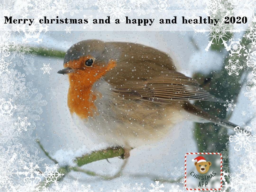 Best wishes for Happy Holidays and a wonderful New Year for everybody!  @WandelenN @staatsbosbeheer @Roots_NL @Natuurmonument @faunabeschermin @volgdenatuur @NatuurfotoNL @IVNNederland @Sovon<br>http://pic.twitter.com/J3ZLg8nmNP