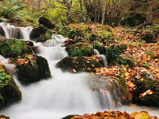 Sonando: La Electricidad - Mcenroe ••• •• • • •• ••• #movilgrafias #iphone6S #asturias #asturiasparaisonatural #estaes_espania #estaes_natura #ok_spain #igers #igers_gijon #igerstierrina #igers_oviedo #ok_asturias https://ift.tt/3751xvHpic.twitter.com/BjQ6h28cNs