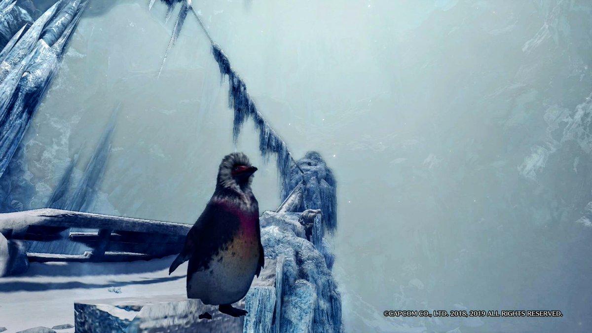 周回 キ ブクレ ペンギン