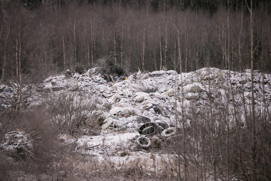 экология владимирской области в картинках белоснежные балясины полиуретана