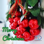 Image for the Tweet beginning: Merry Christmas from the CSDNET