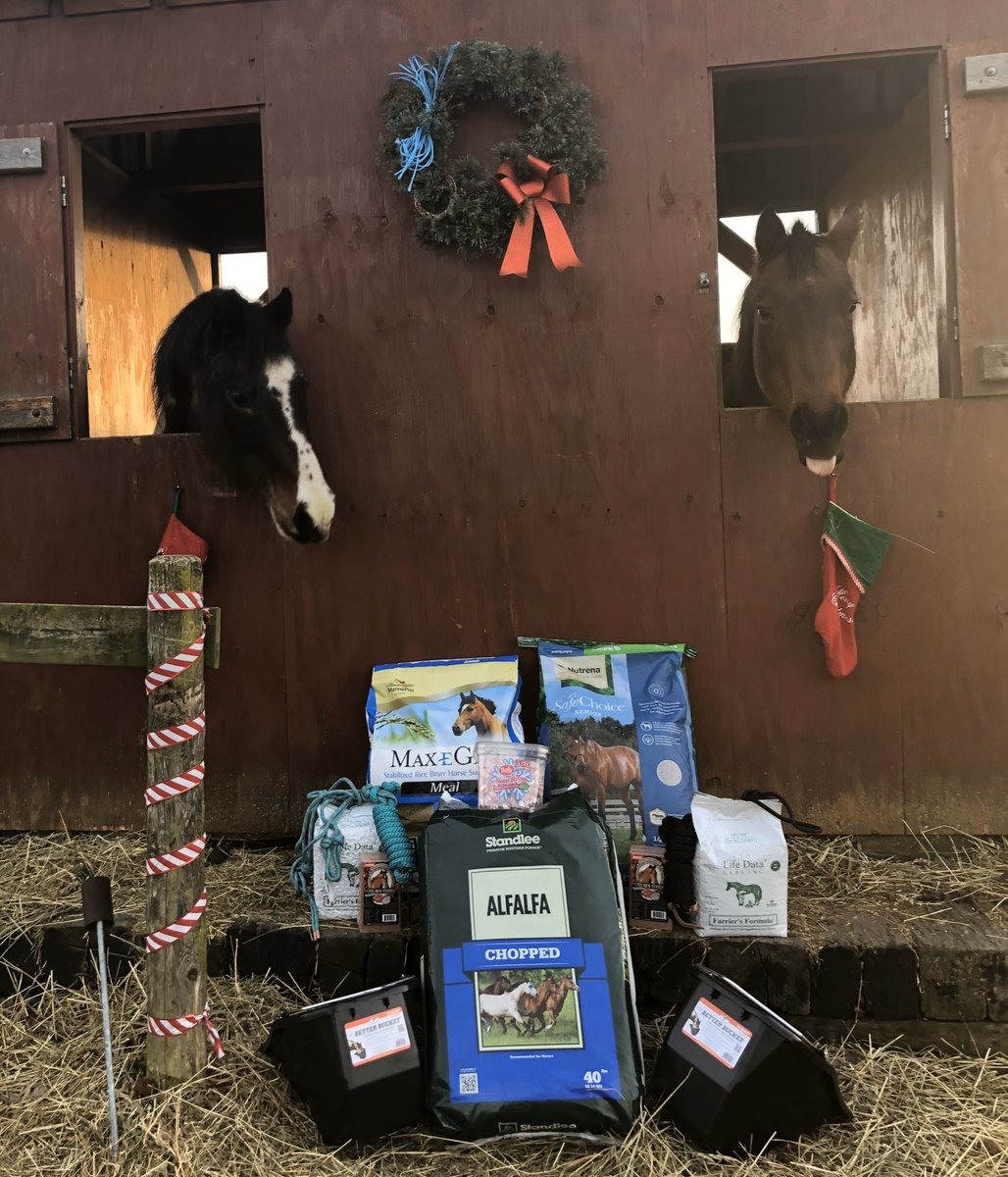 The horses must have been good this year! Father Christmas spoiled them! Does anyone else get their horses Christmas gifts? @StandleeForage @MannaProHorse @NutrenaFeed @LifeDataLabs @AQHA @APHAnews  #ILoveMyHorses #MerryChrismaspic.twitter.com/SFJdR9WUBT