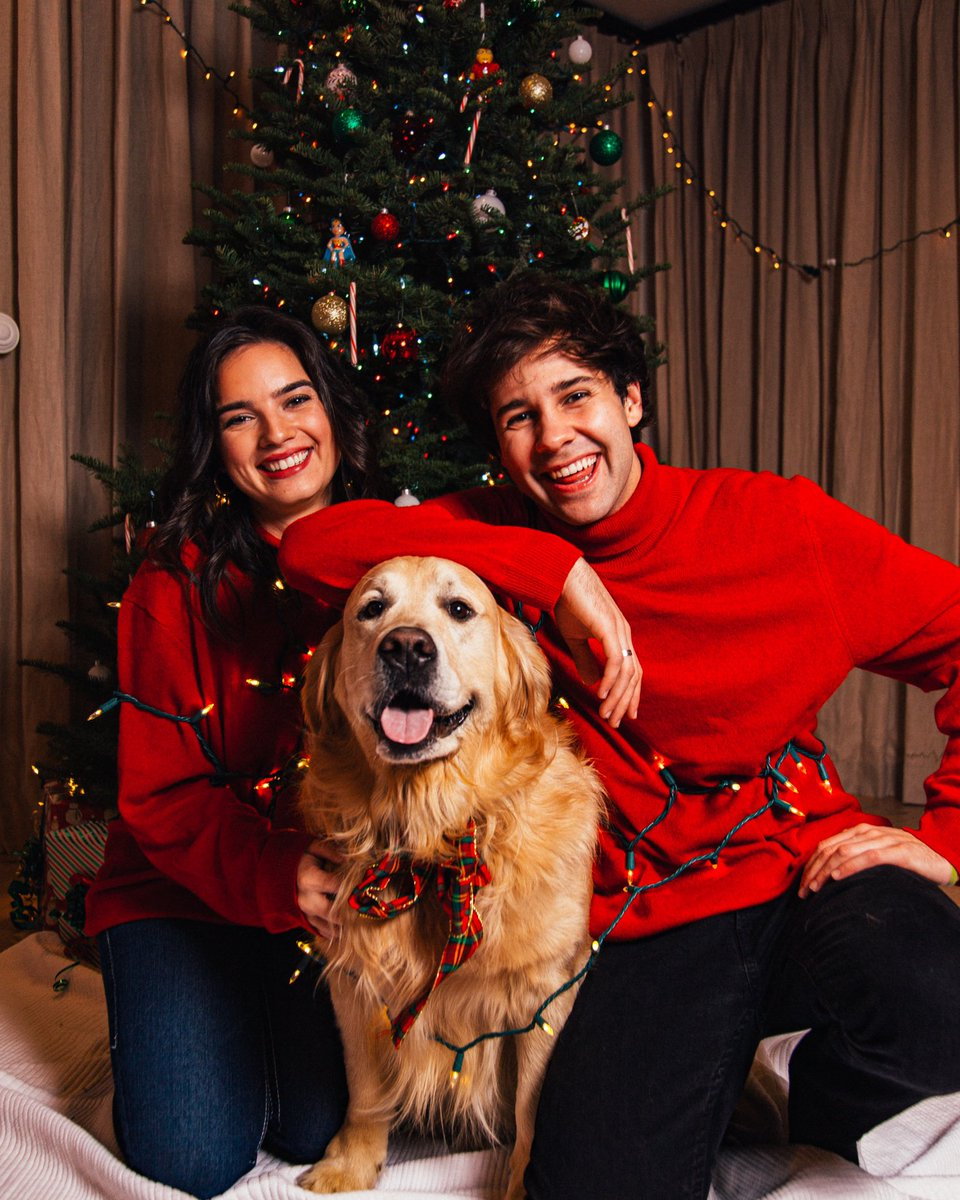 Merry christmas from us and Santa Paws