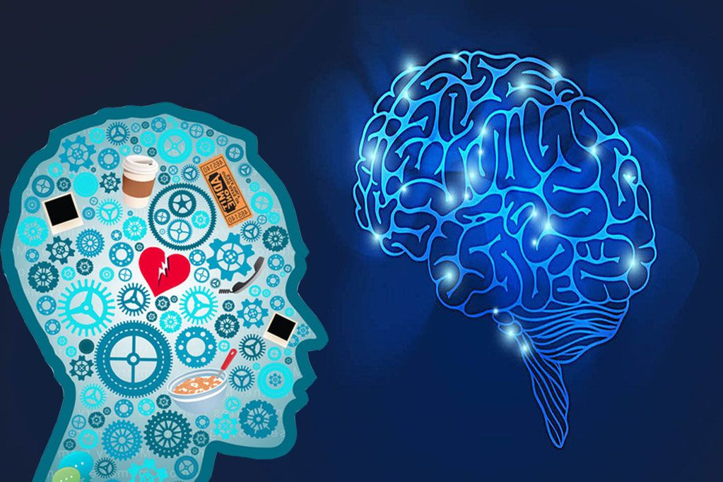 Natural supplements and vitamins for treatment and prevention of dementia and cognitive decline
