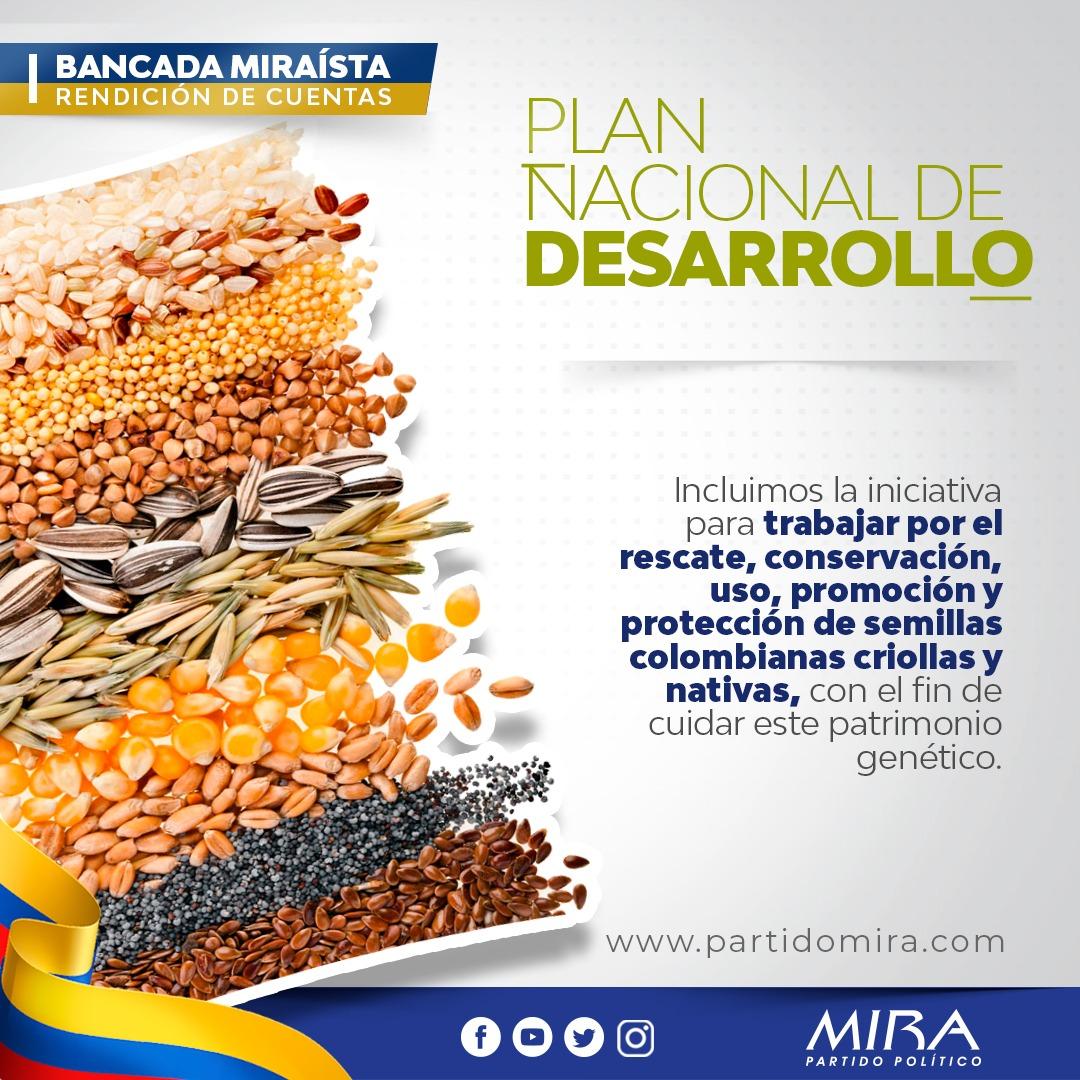 Rendición de cuentas @PartidoMIRA 2019:  En #PND2019 se aprobó propuesta de nuestra Bancada, para dar fomento, conservación, uso, promoción y protección de semillas colombianas.  @carlos_guevara @AnaPaolaAgudelo @aydeelizarazoc @irmalherrera  Detalles: https://t.co/ONZTrq7Pj4 https://t.co/AETk7pp2Zi