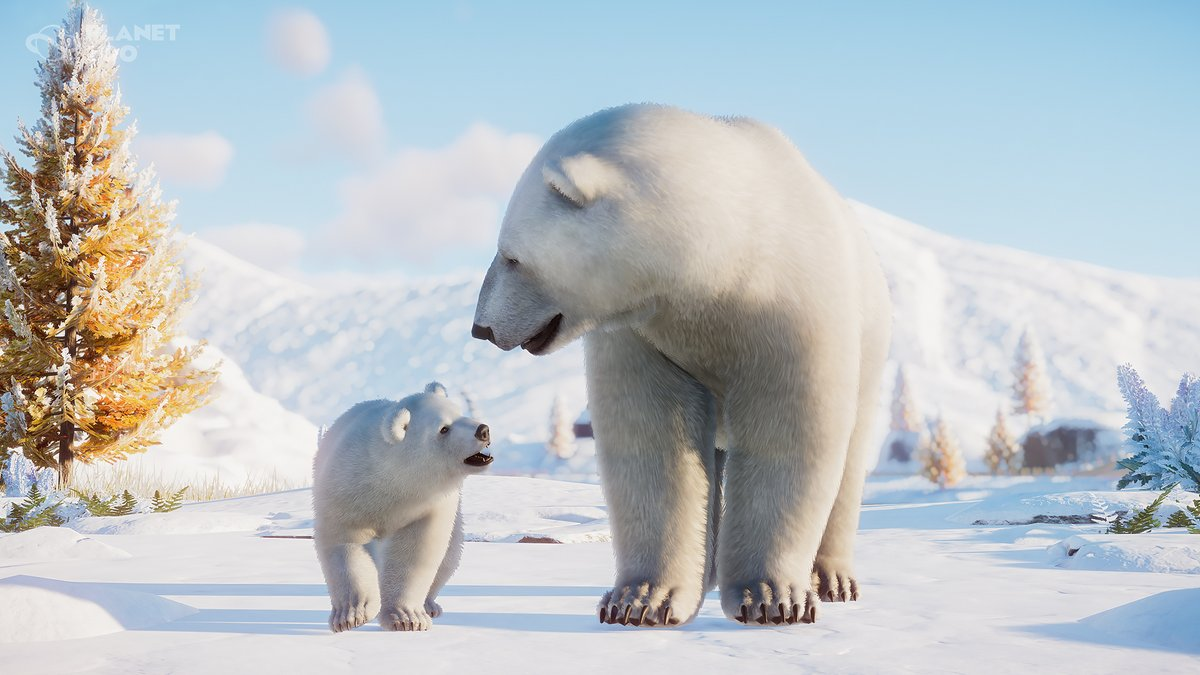 """Planet Zoo on Twitter: """"Polar Bears have small bumps called papillae on the  pads of their feet to stop them from slipping on ice. #ZoopediaFacts…  https://t.co/eJHC2bWijM"""""""