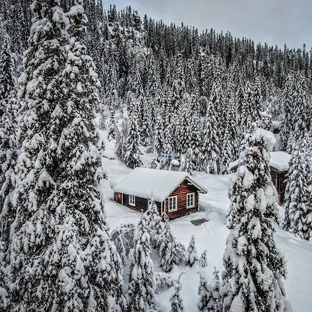 A cabin in the woods is a place to recharge the soul. . . . #cabin #cabinfever #cabininthewoods #cabinlife #killerview #instacabin #instacabininthewoods #mountaincabin #logcabin #tinyhouse #cabinlove #hytte #hytteliv…  https://www.instagram.com/p/B6lCucfBt6r/ via https://tweet.photopic.twitter.com/77l7QSYZHo