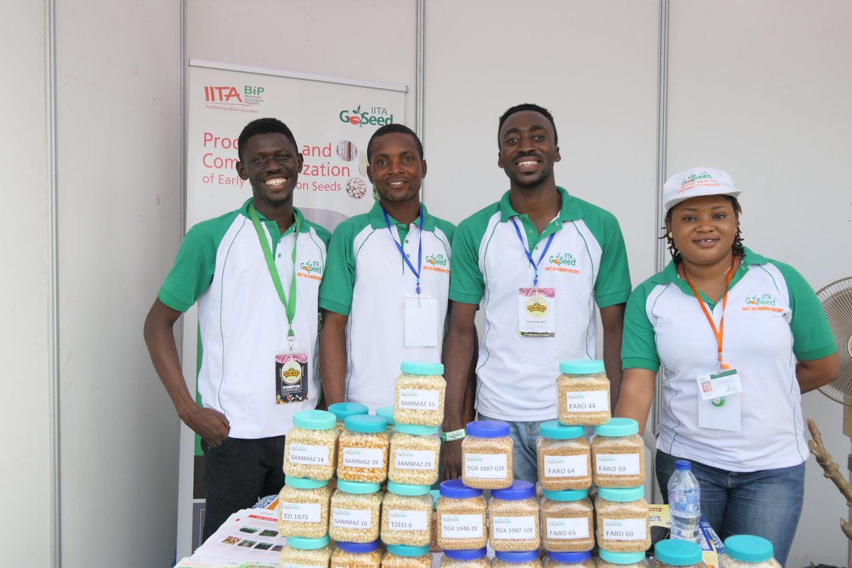 Our team exhibited at #NFF2019. We took some of our products there for display, and people were amazed at the sizes of our cassava roots harvested.  Following the good agronomic practices, and planting quality stems are to be noted for quality harvest.  #Agribusiness #Farming<br>http://pic.twitter.com/0LOQlXU7lQ