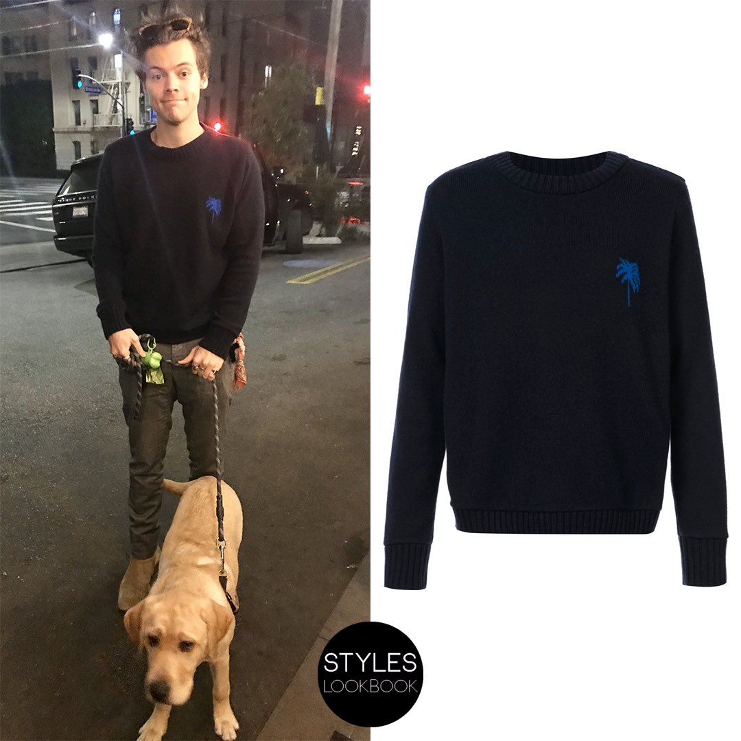 In this picture from January 2018, Harry is wearing a palm tree cashmere sweater from #TheElderStatesman. This piece has many different versions and currently it is available in black/neon red. https://styleslookbook.com/post/190159167342/in-this-picture-from-january-2018-harry-is …   rorydcarrollpic.twitter.com/BT5Ky9ol5m