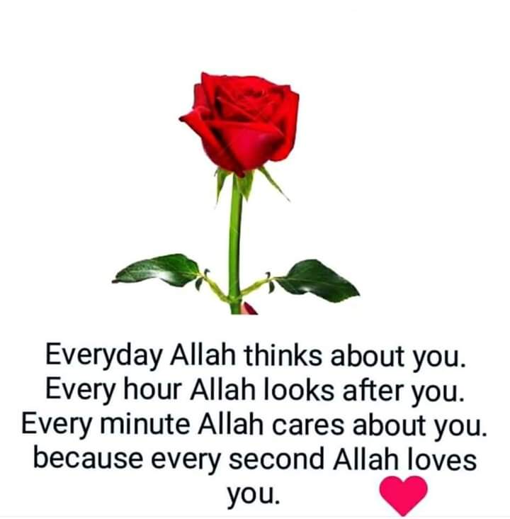 Who r facing many struggles don't lose hope because allah loves u ,if allaah loves someone he will test him through some tests.. Say Ma sha allah,Alhamdulillaah for everything..go towards allaah and inthe end u r the reall winner..#NeverLoseHope #OnlyAllah4Ever #HopeNotOut<br>http://pic.twitter.com/QBePOXdT1h