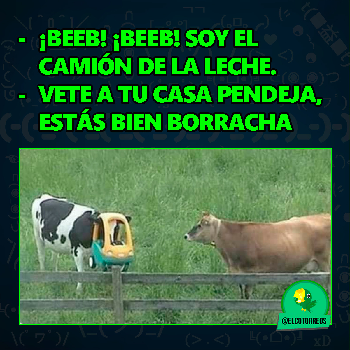 Beeb! La vaca lola XD   Sígueme  para mucho mas: @elcotorreos  #memesespañol #momazos #momazo #memazos #momo #momos #memes #meme #humor #sdlg #momossad #momos_4k #repoio #cmamo #cmamut #chistes #gracioso #funnymemes #memes#lmao #memesdailypic.twitter.com/wHkEMGezw4