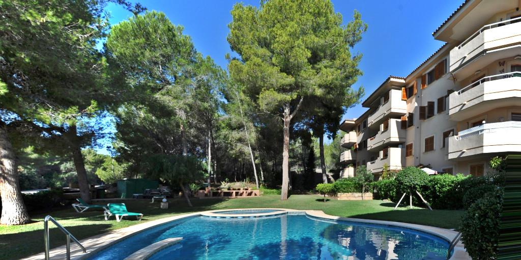 - Wir können Mallorca.  Appartement mit Pool und Parkplatz, Aufzug und Gaszentralheizung in Peguera.  Preis :  335.000,-- Euro  https://www.pur-mallorca.com/immo/id-1883-gepflegtes-appartement-in-peguera/…  #Mallorca #peguera  #PURMallorca #appartement #poolanlage #propertyforsale #mallorcasouthwest #mallorcalove #PMIpic.twitter.com/Yk7KgkgGcm