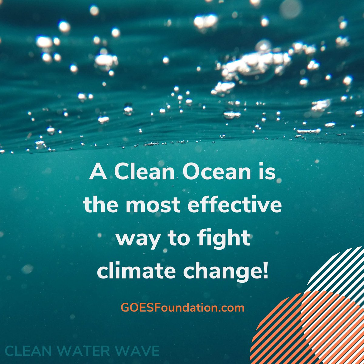 CleanWaterWave photo