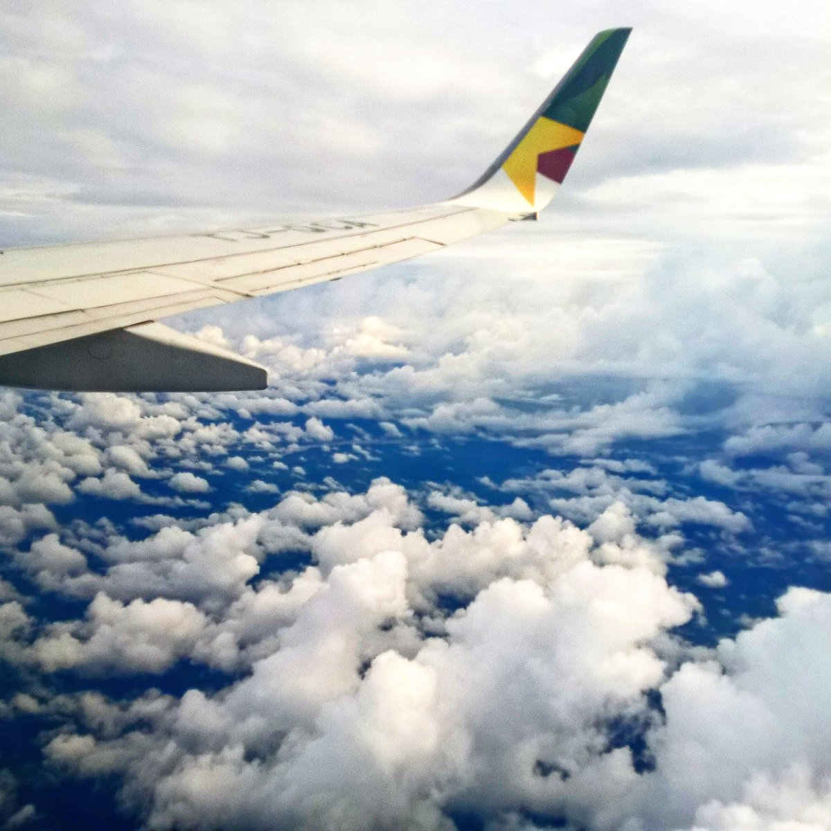 #Cameroon from above.  #camairco #MontCameroun