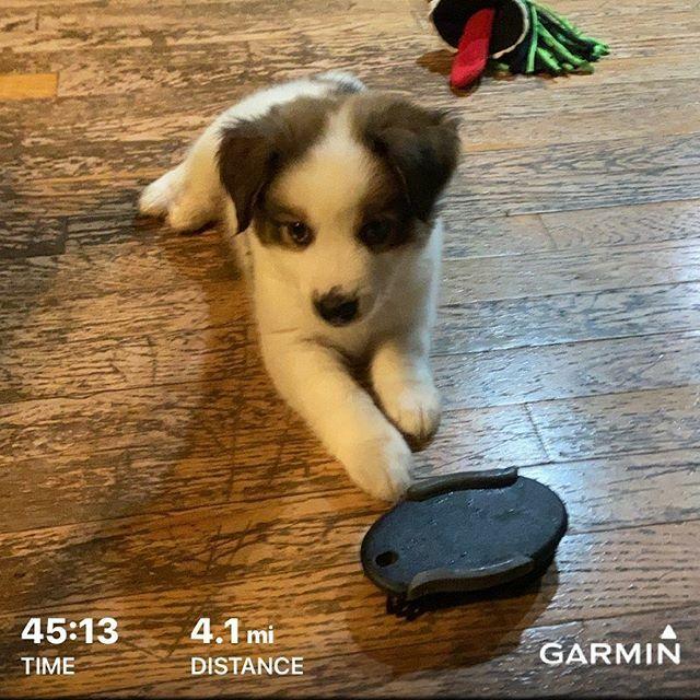Some days we just don't feel it  like I did on my treadmill run so stopped  and will pick it back up tomorrow. #treadmillrunning #running #runner #ultratraining #notfeelingittoday  #runagaintomorrow #grateful   https:// ift.tt/2QFRMPg    <br>http://pic.twitter.com/0pS28a6Q7s
