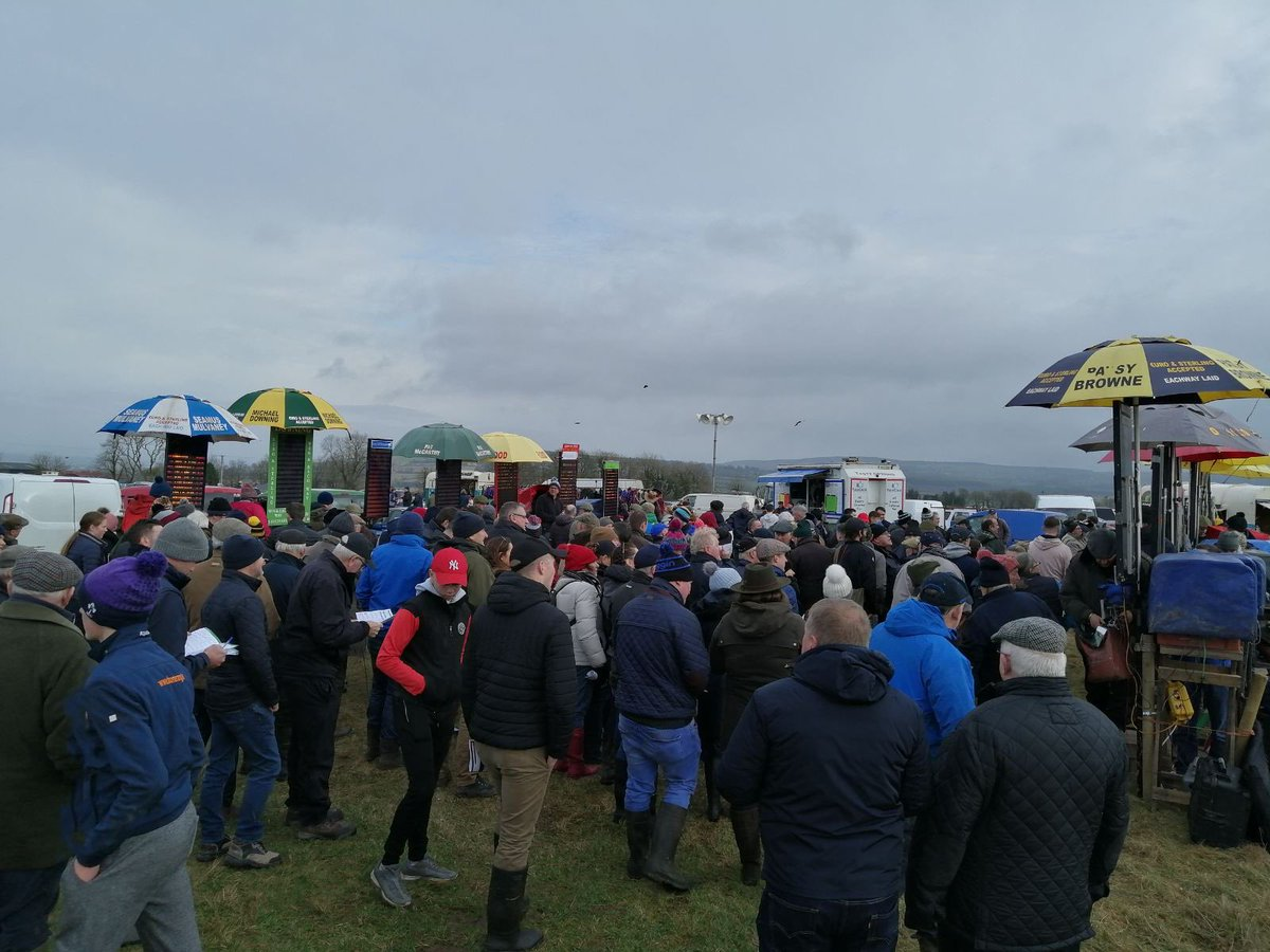 test Twitter Media - Great crowd at the last Point To Point of 2019 for us at Dromahane today https://t.co/r5QfElIBbw