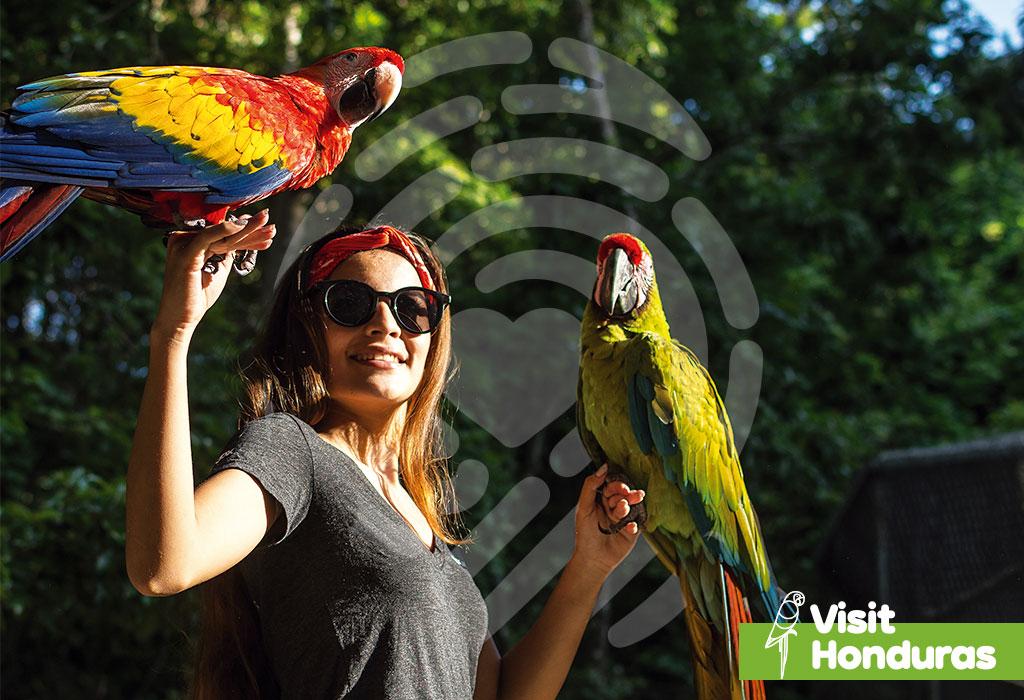 🧡🇭🇳The start of a good friendship... #VisitHonduras #Animals #Travel