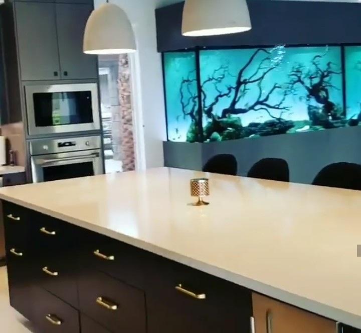 A #fantasticview from your #kitchen in tonight's #aquarium/#pond of the day #aquascaping #aquariums #freshwateraquarium #plantedaquarium #aquariumoftheday #plantedtank #fishtank #tropicalfish #aquatics #aquariumgoals #aquascaper #ponds #koipond #paladarium #marineaquariumspic.twitter.com/fGLJYgEz5U
